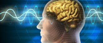 Продукты для улучшения работы и питания мозга
