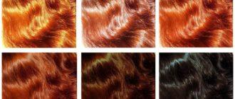 Инструкция по окраске волос хной в домашних условиях